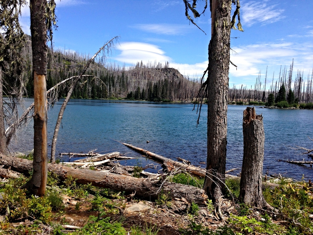 Wasco Lake