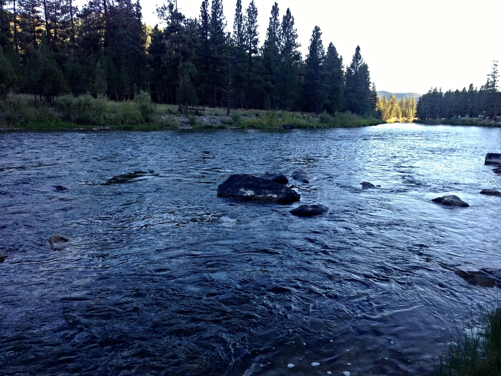 The Blackfoot River where I landed some nice cutthroats.