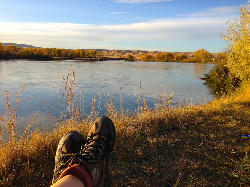 Kicking up my wading boots along the banks of the Bighorn River, Montana (taken October 18th)