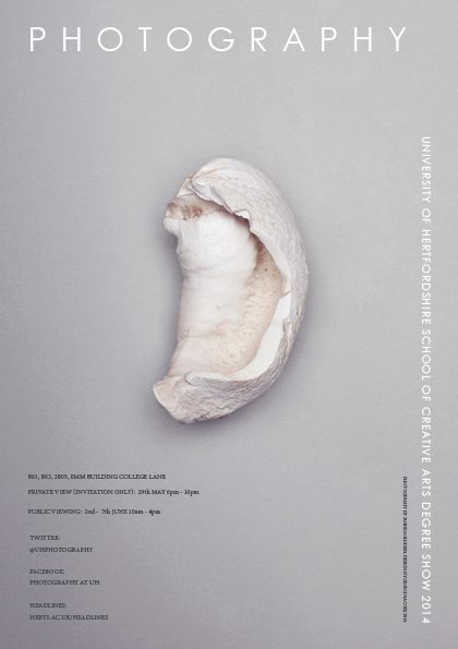 Degree Show plakat