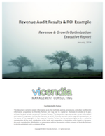 RevenueAudit.png