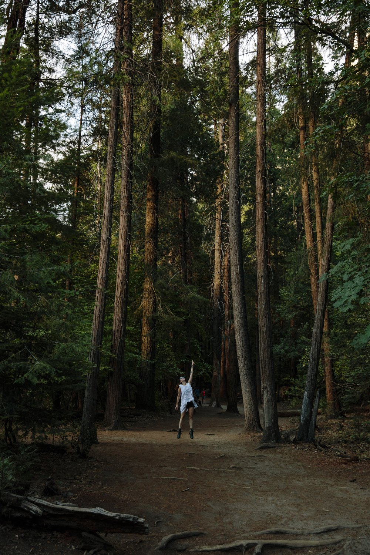 Photo by Kendrick Brinson | Yosemite National Park | 2017