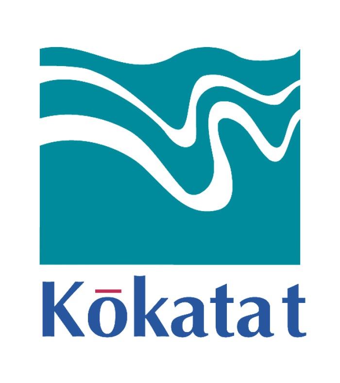 Kokatat PFD / Life Jackets