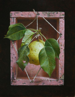 """Last Pear"" Oil on Canvas 10"" x 8"""