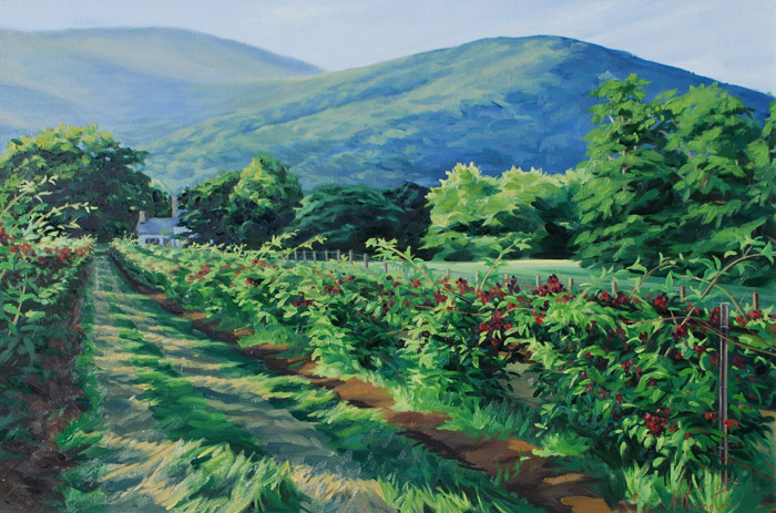 """Rows of Ripening Blackberries"" Oil on canvas 20"" x 30"""
