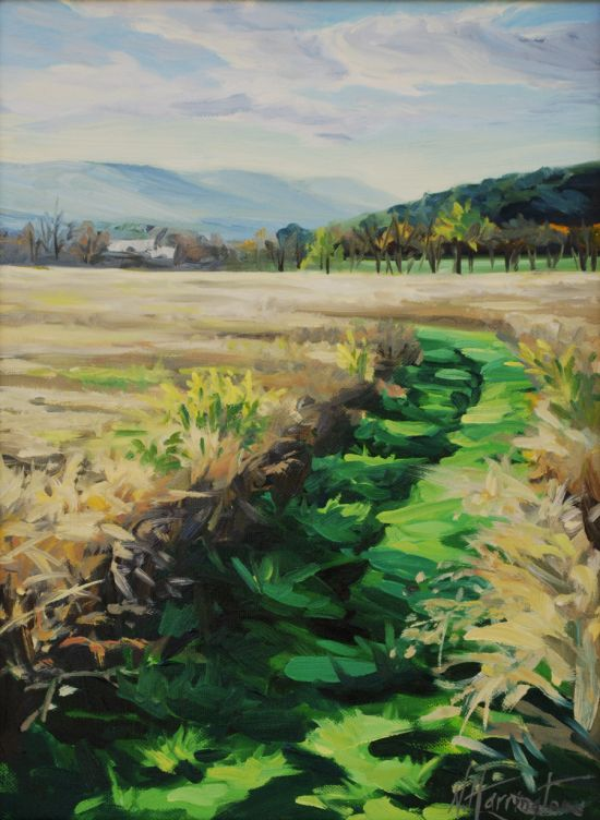 """Mowed Path Through the Grass"" Oil on canvas 16"" x 12"""