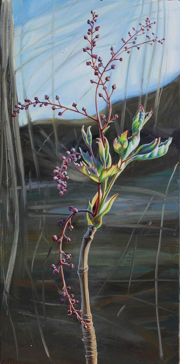 """Yellow Root ( Xanthorhiza ) Emerging"" 48"" x 24"" Oil on canvas"