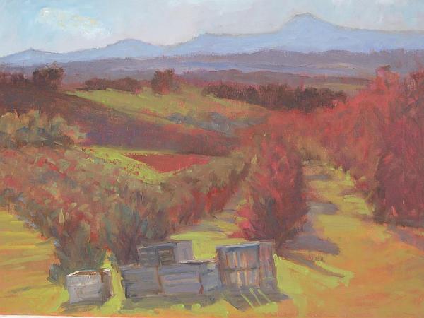Harvest_Landscape