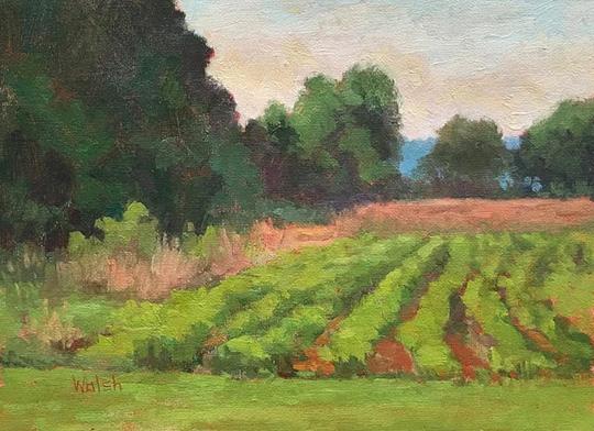 Bean Field_9x12_oil_Meg_Walsh.jpg