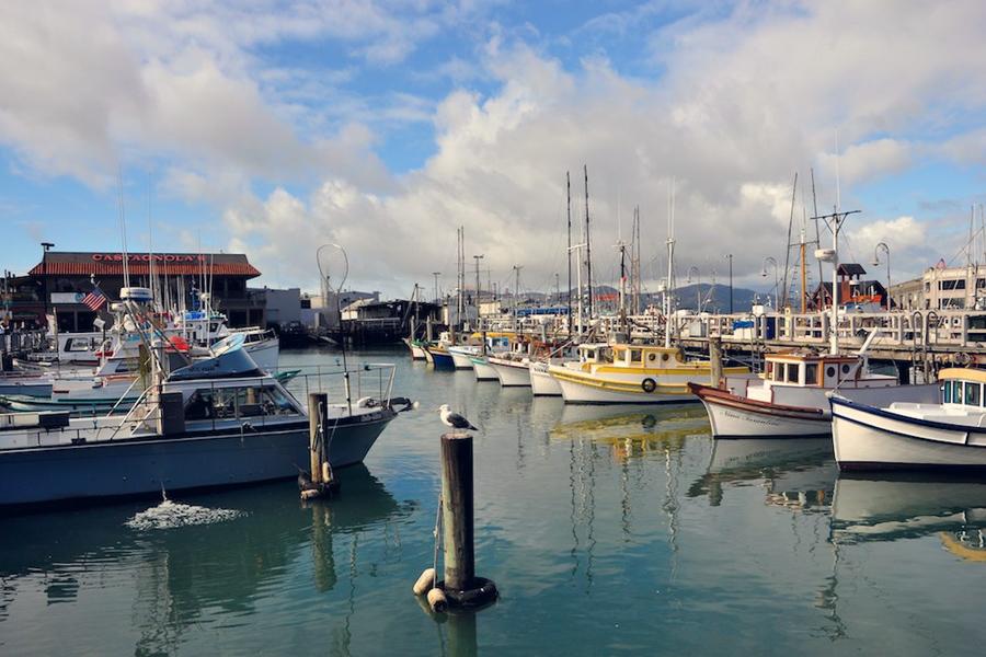 sfboats.jpg