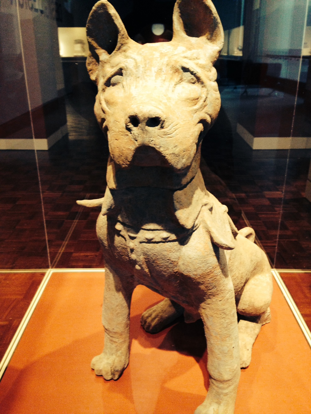 this dog has been this good for around 2000 years.