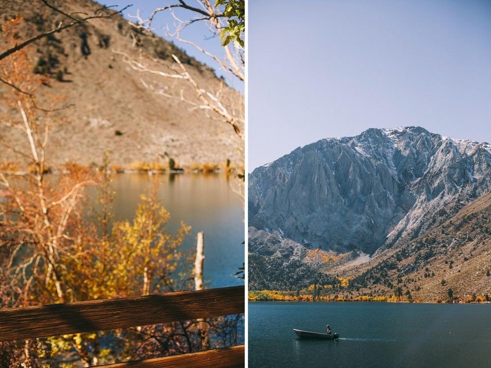 lake+trees.jpg