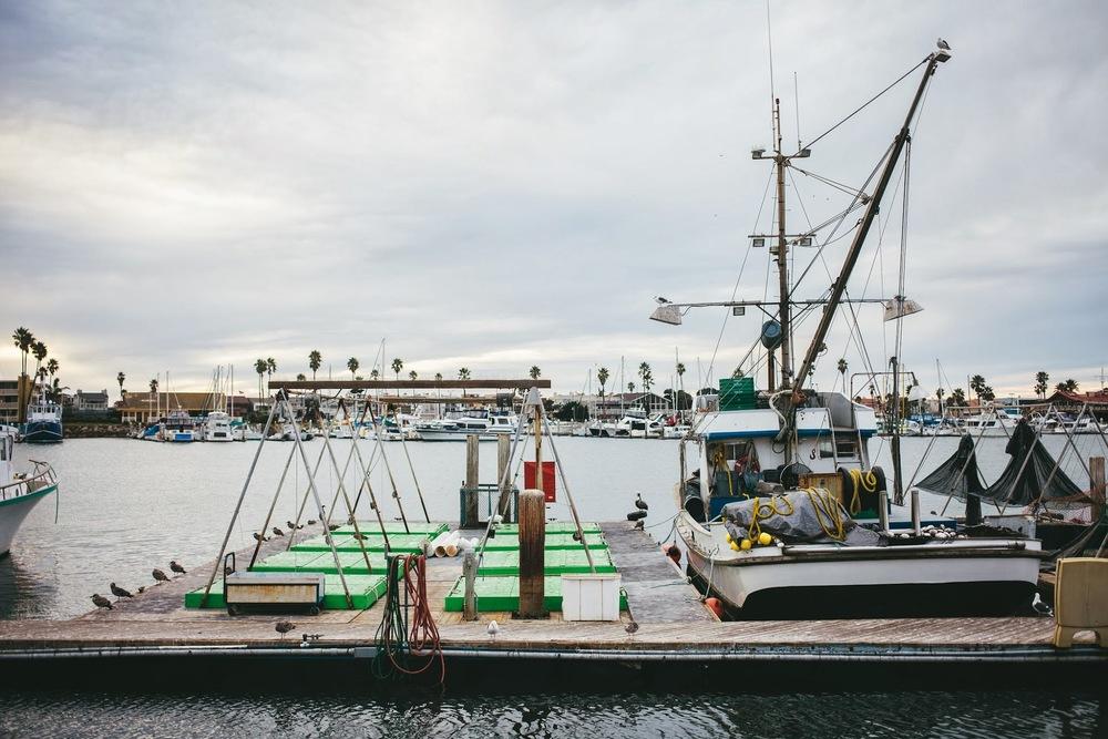 fishing+boats+harbor.jpg