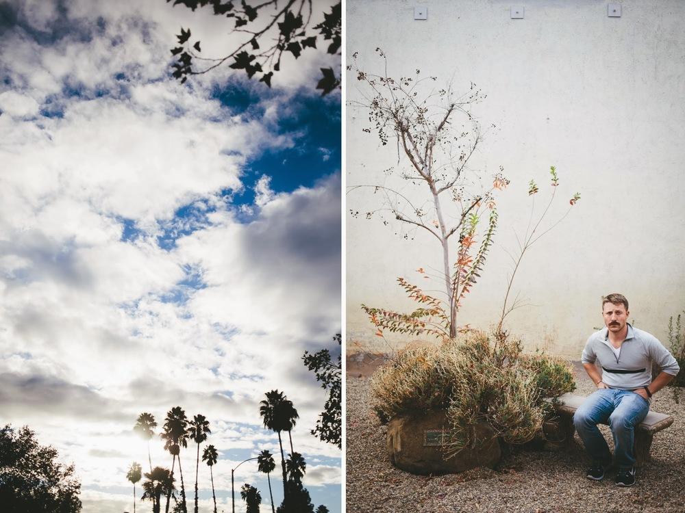 ojai+palm+trees+.jpg
