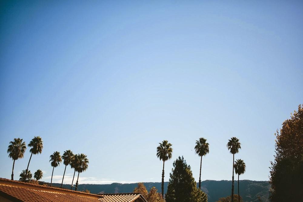 ojai+palm+trees.jpg