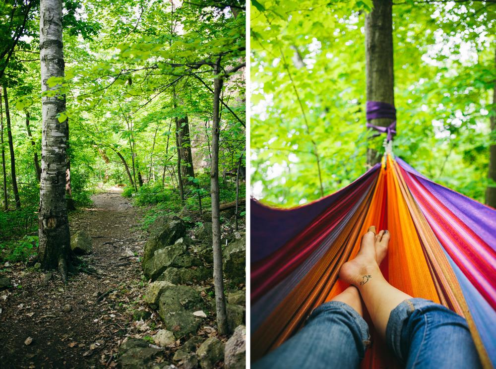 hammock woods.jpg