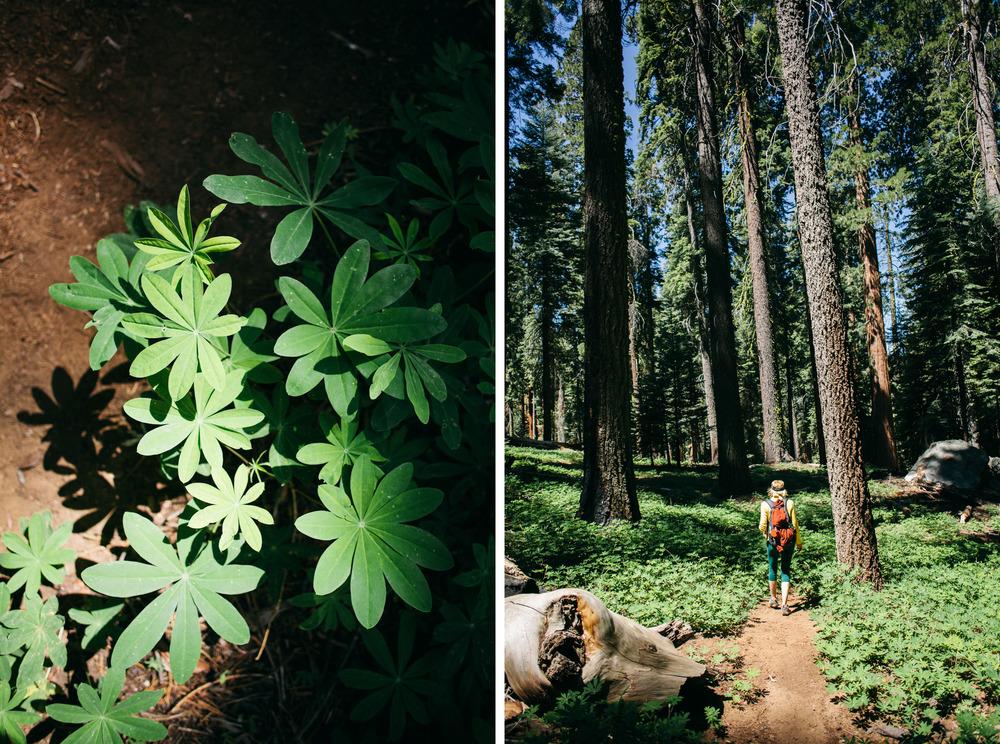 kalen hiking.jpg