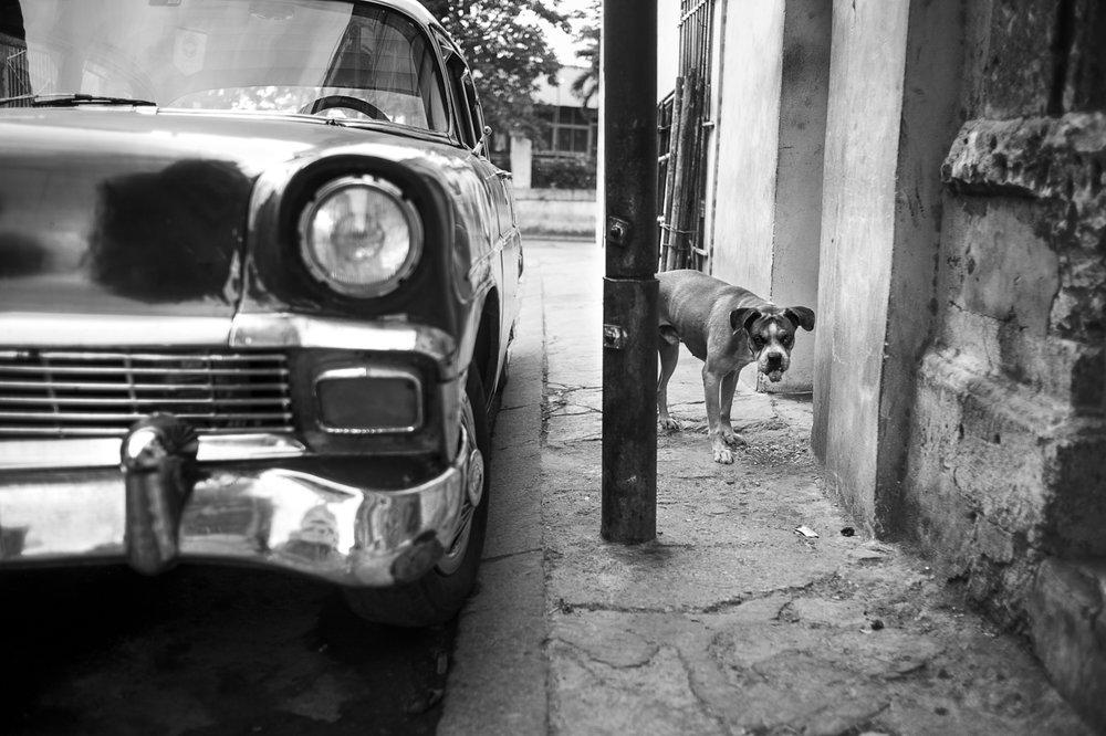 2016_03_20_CUBA_AS_02692-w1.jpg