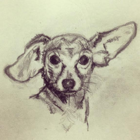 Portrait of Pickles as a young dog, 2014, Pebbles Russell