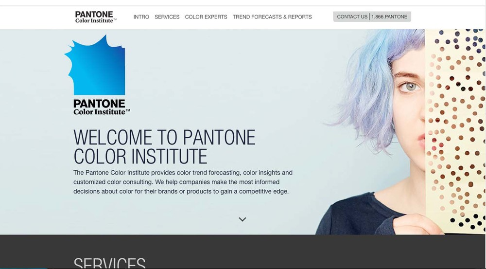 Image of Pantone/Pantone Color Institute