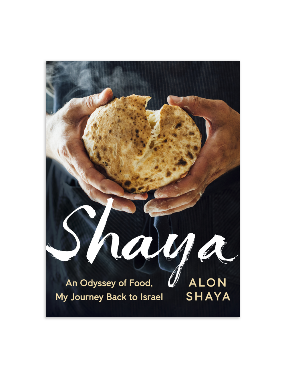 shaya_book_cover.png
