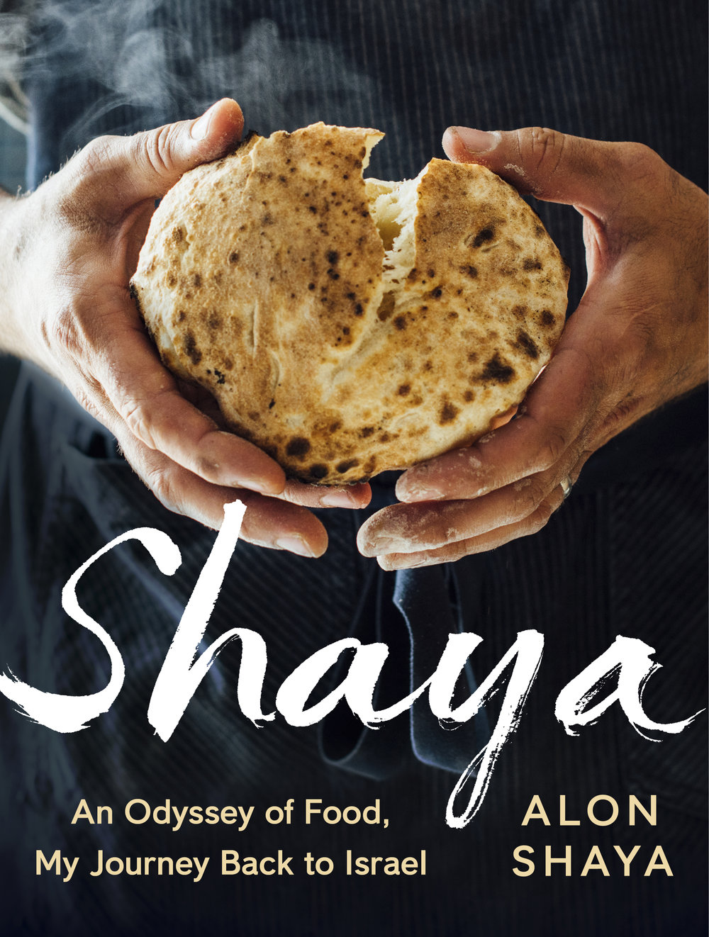 shaya_book_cover.jpg