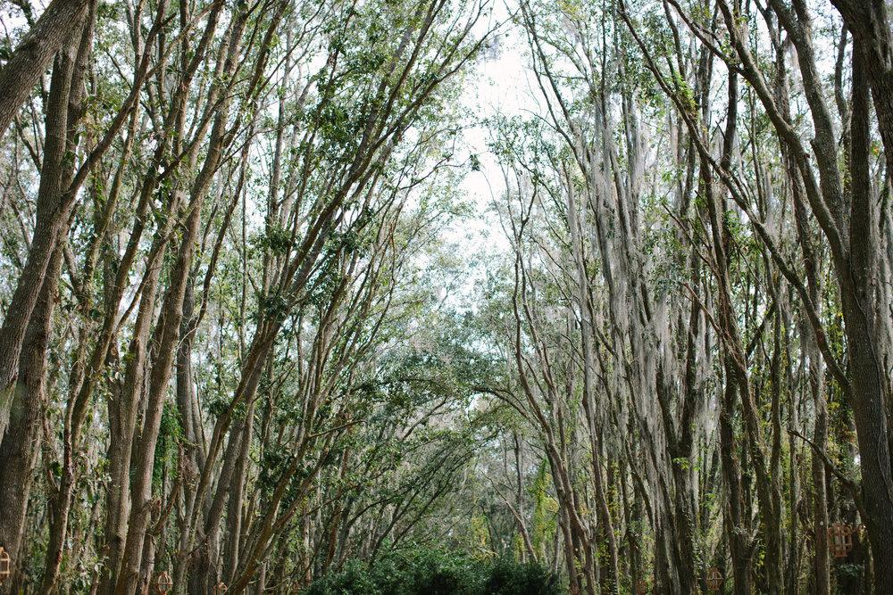 Gables | Florida Rustic Barn Weddings | Plant City, Florida Wedding Photography | Benjamin Hewitt Photographer