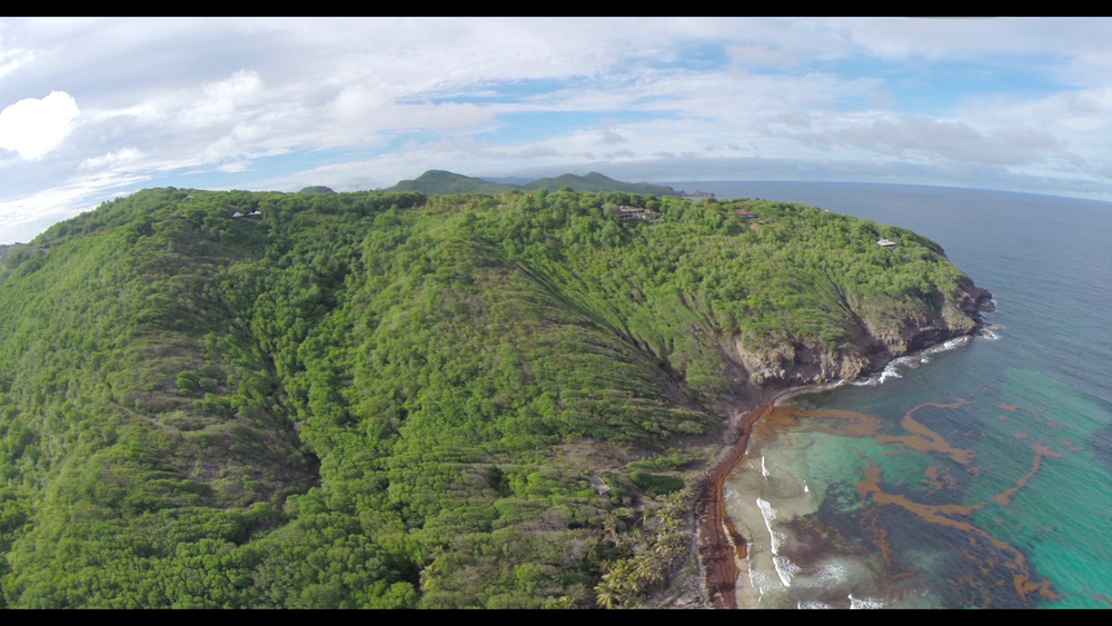 Bequia Quadcopter Beach Still - note seaweed in the water