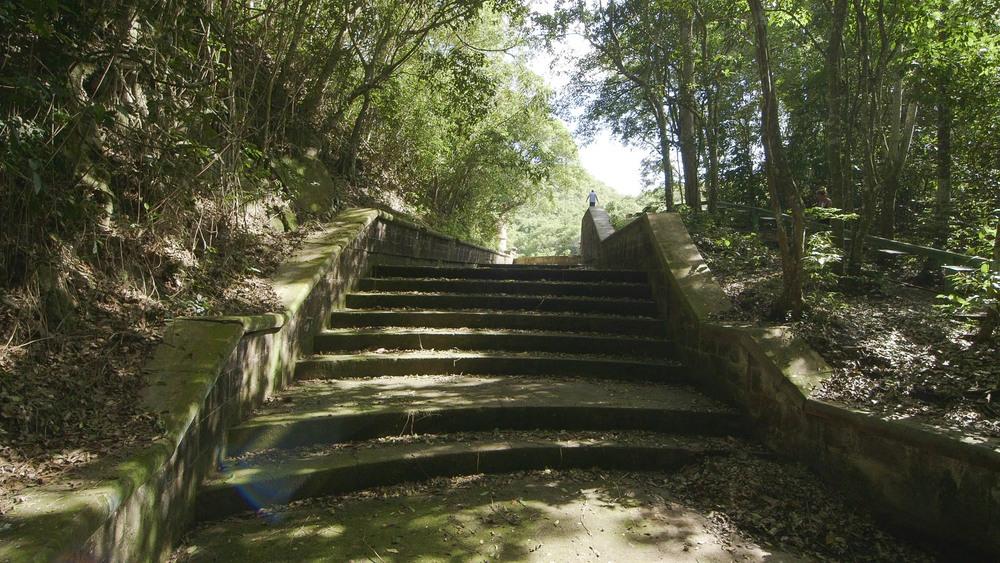 Wallings Dam, Now Dry - Video Still, Tom Miller
