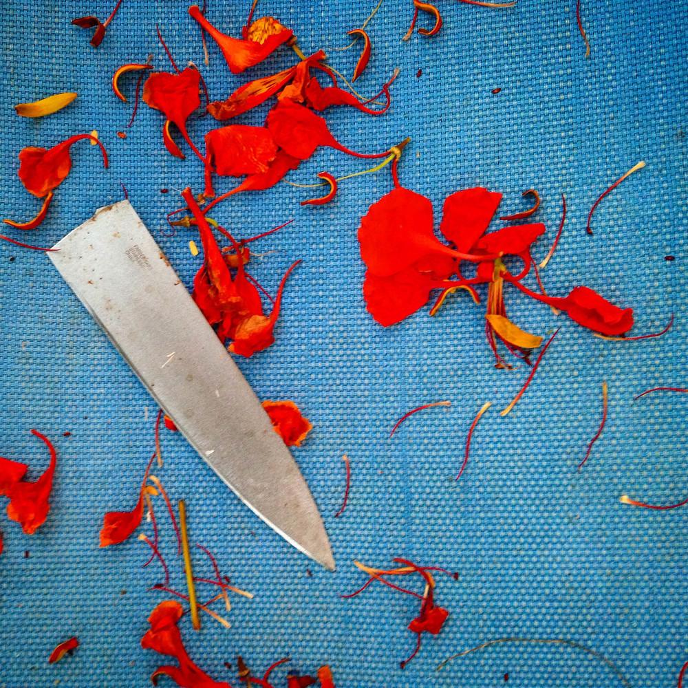 Flamboyant Petals Knife