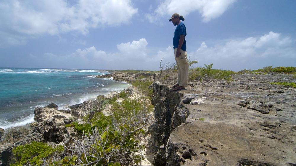Zander, standing on the limestone cliff, Spanish Point - Video Still, Tom Miller