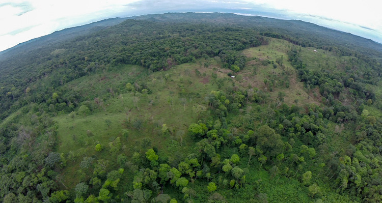 View of illegal deforestation of the Rama territory. Clear cutting for cattle grazing - video still, Tom Miller