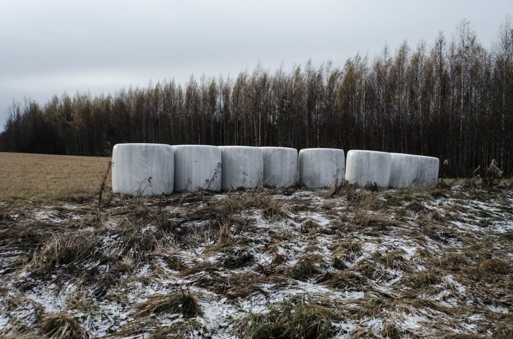 Rolls of Hay, Selkie