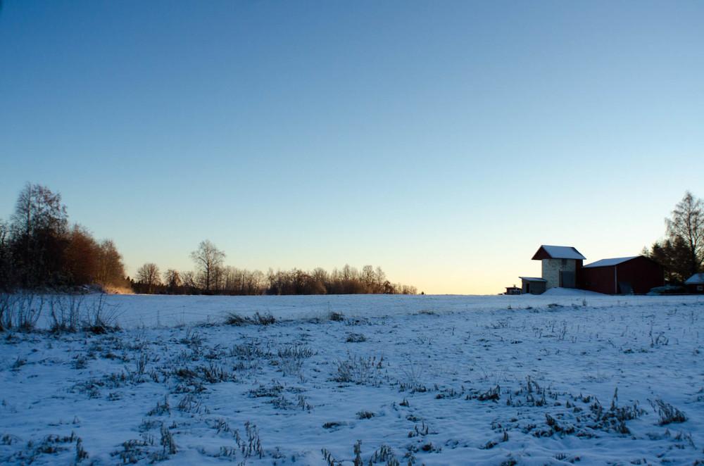 Farm, Selkie
