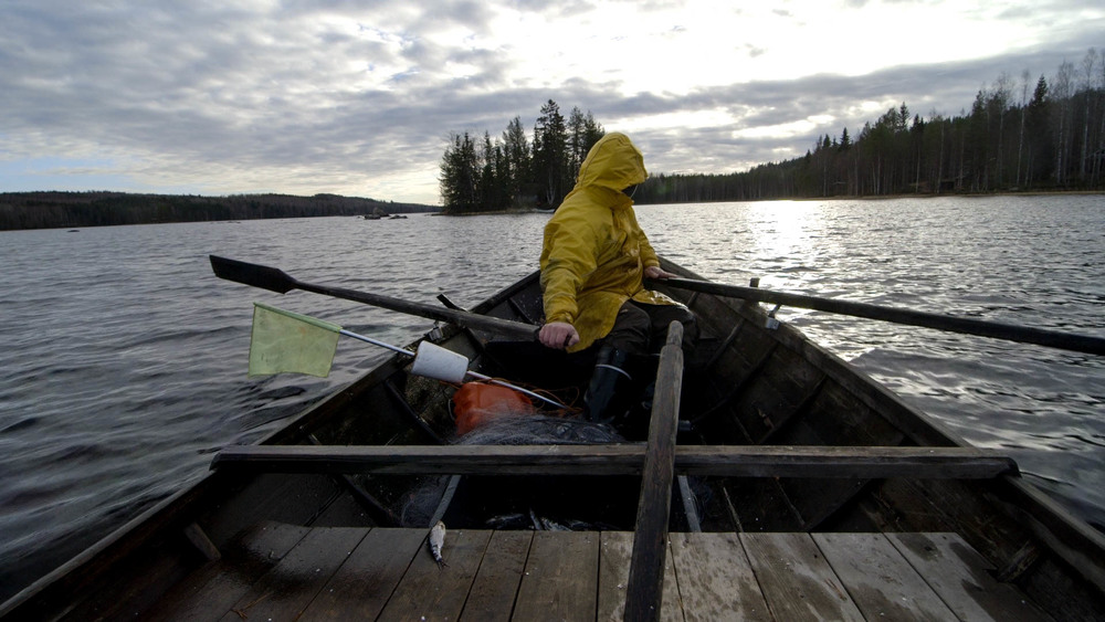 Rowing to the cabin.jpg