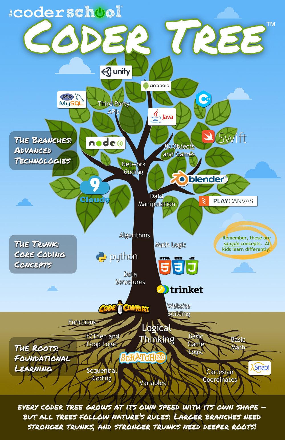 theCoderSchool's Coder Tree