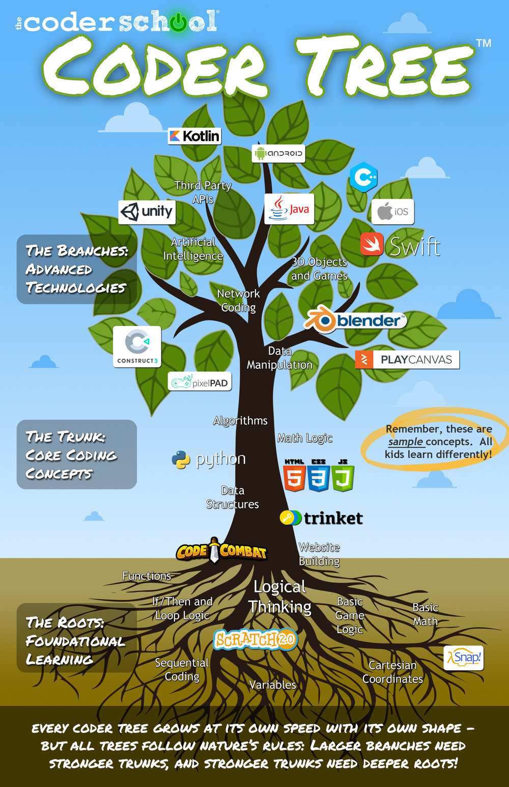 theCoderSchool's Coder Tree®