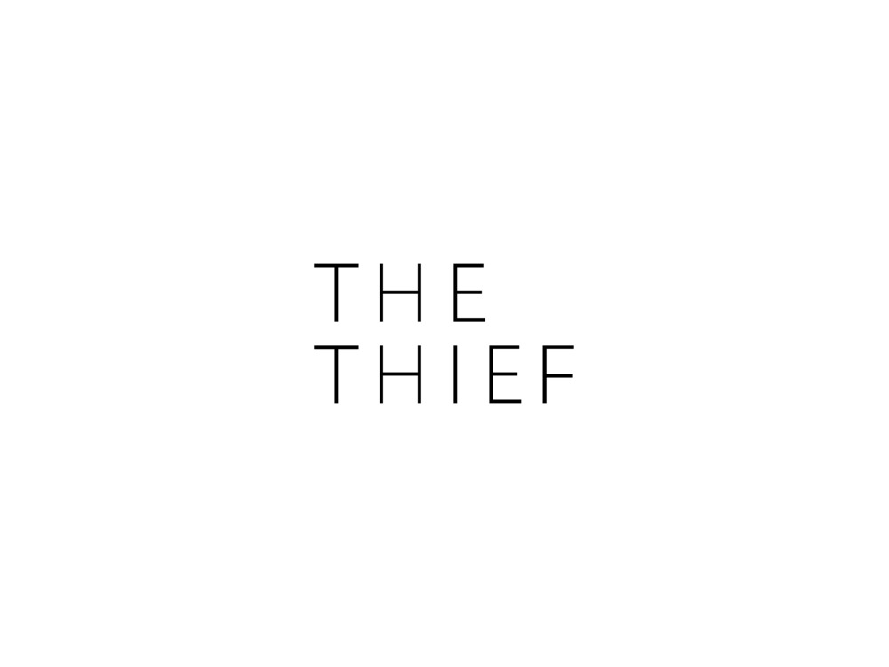 THIEF_presentasjon_pitch-230611_Page_12.jpg