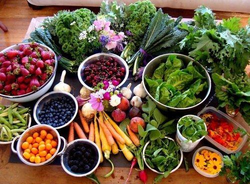 detoxforvegetarians.jpg