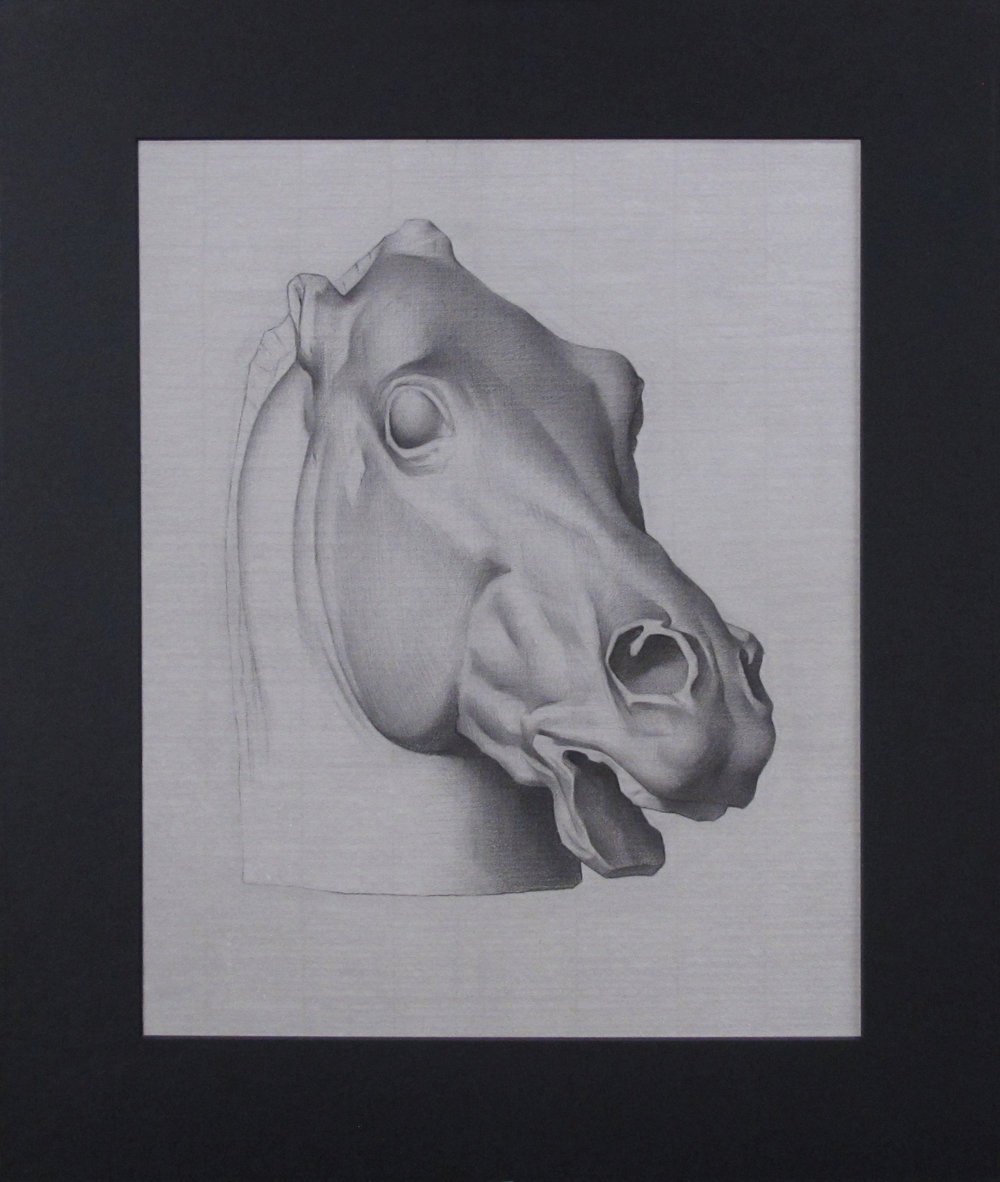 "Bargue Drawing (Wednesday Night Class) ~ JH ""Head of a Horse"" Nitram Charcoa on Grey Roma Paper Image Size = 15"" x 12"" Mat Size = 20"" x 17"" $275"