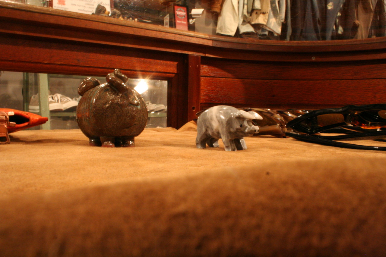 Tiny pigs guarding the Hackett sunglasses we carry in our 14th street store.