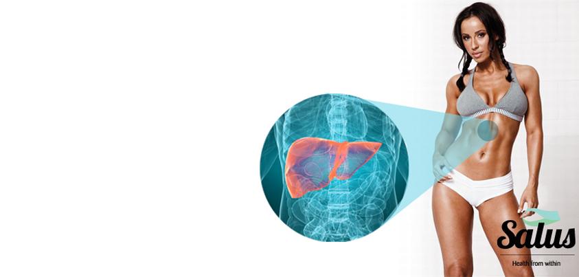 liver_web.jpg