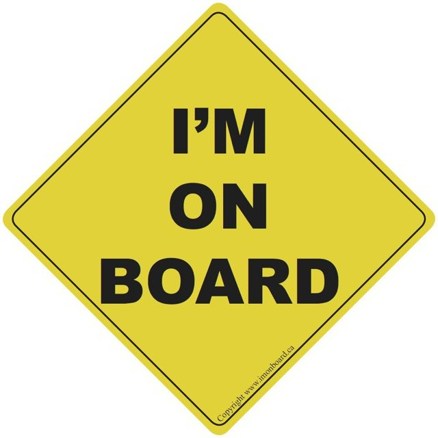 Baby On Board Car Sign LITTLE PERSON On Board Car Sign Suction Cup Car Sign