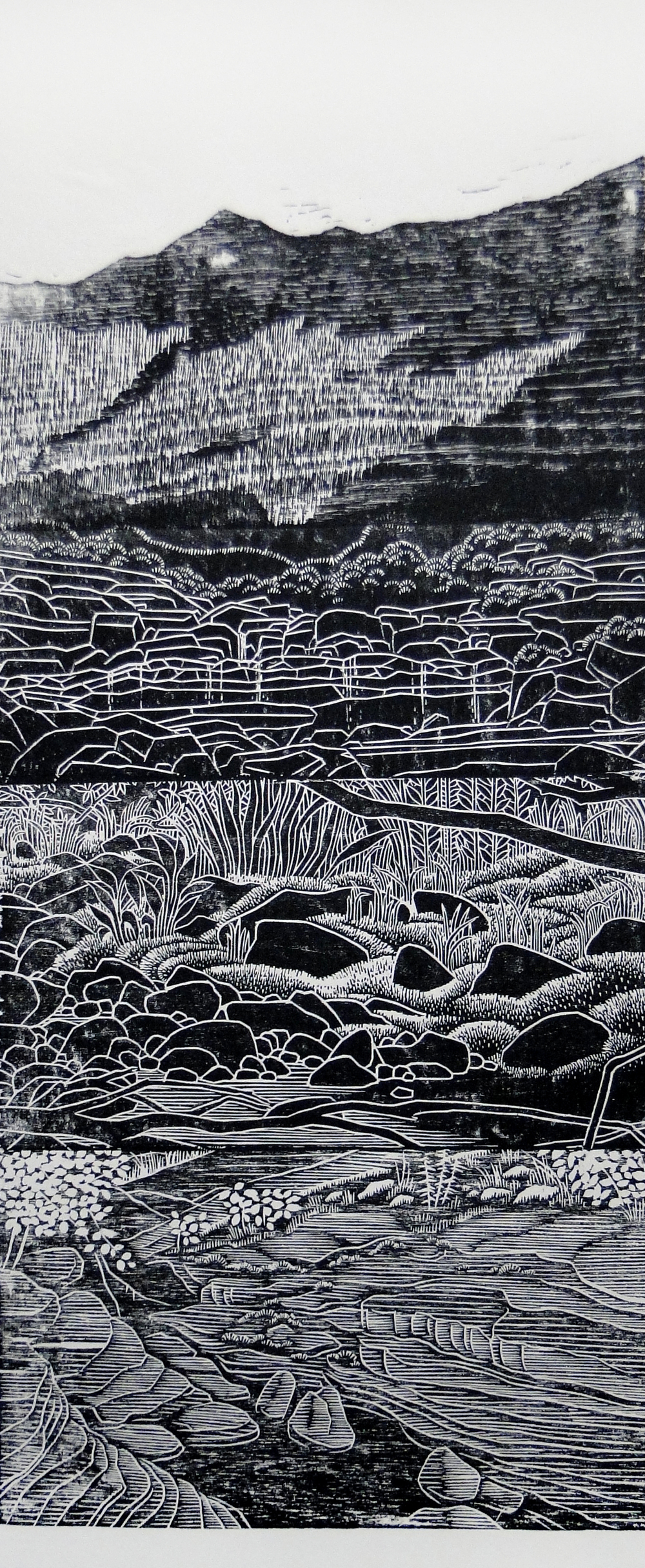 Relief print,  2014