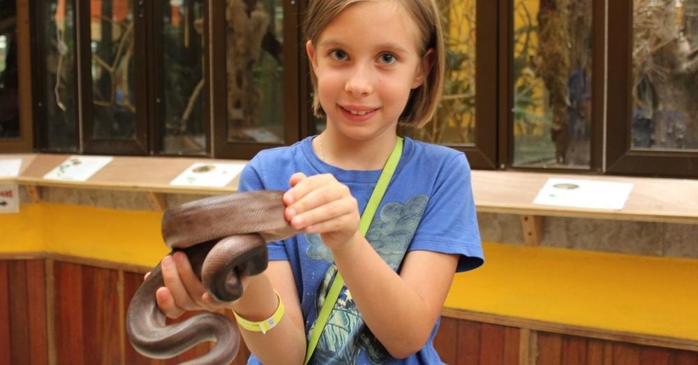 Handling Snakes