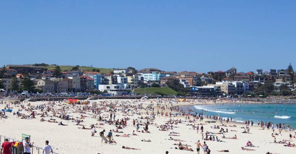 The beach at Bondi.