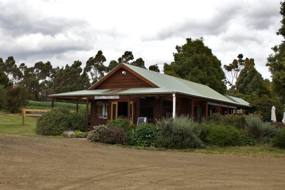 Sorell Fruit Farm