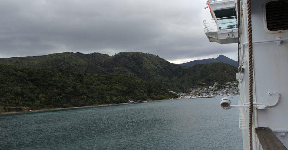 NZ118.jpg