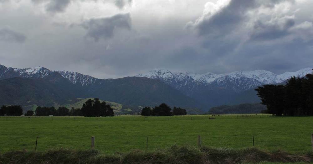 NZ129.jpg
