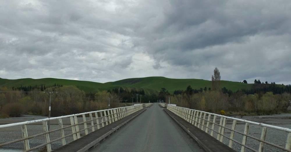 NZ142.jpg